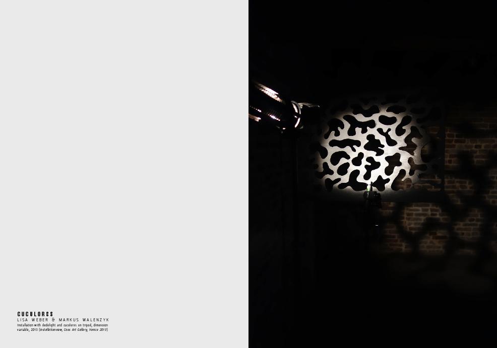 CUCULORES Dokumetation 20133