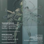 Transient Bodies - Expected Clash Locandina